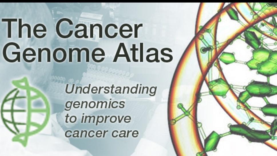 Cancer Genome Atlas - A Cancer Catalog - Glopinion - GLBrain.com