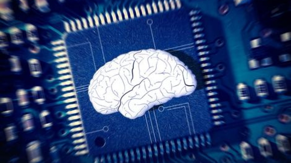 computers mimic the human mind A new computer chip mimics this computer chip can think like a human brain ibm researchers aren't the only ones building computer chips that mimic the brain.