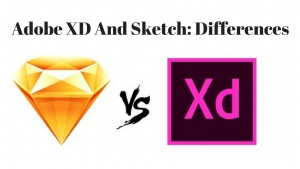 Adobe XD And Sketch: Differences