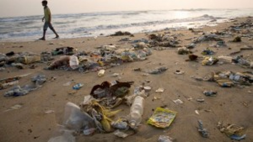 Role of Government and the Problems Faced in protecting our environment