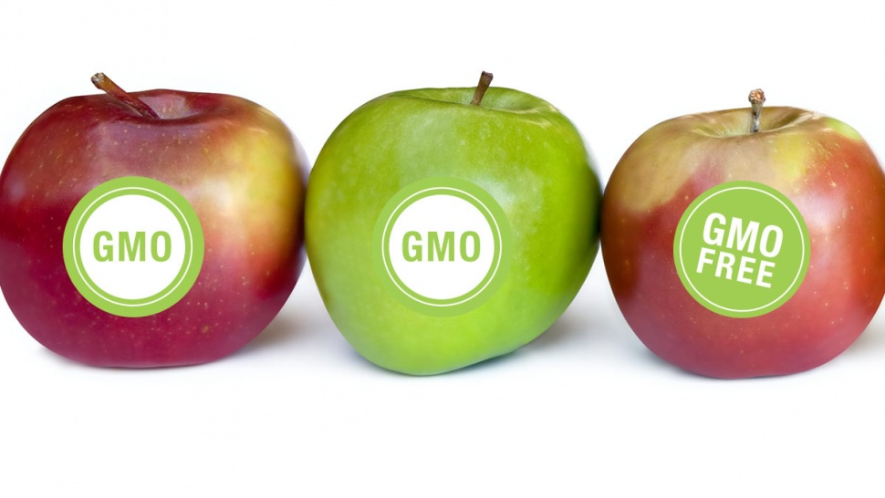 gm crops pros and cons