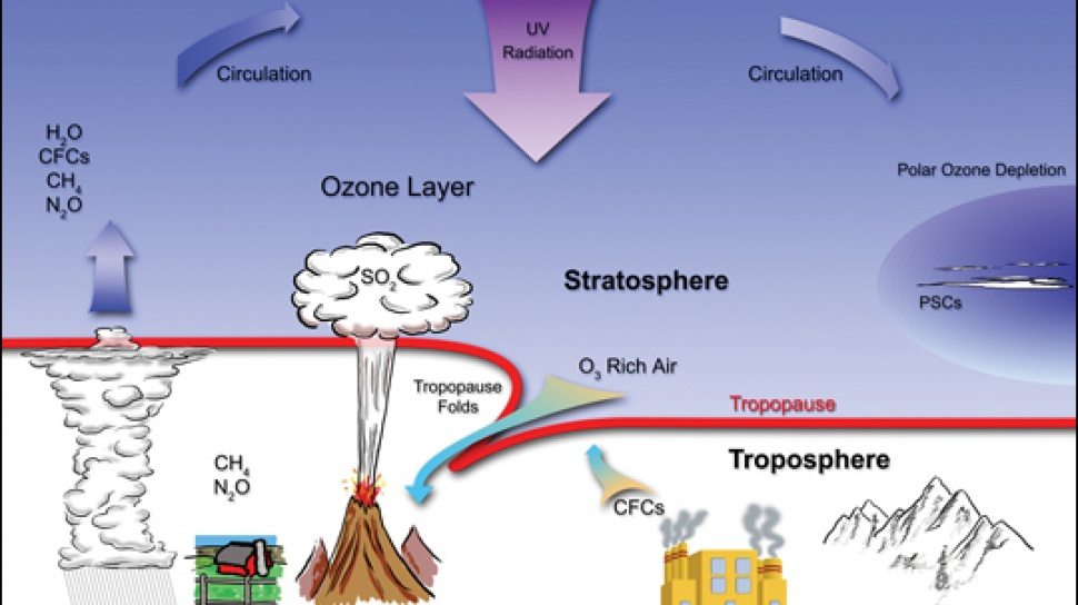 the importance of the stratospheric ozone layer The protective role of the ozone layer in the upper atmosphere is so vital that scientists believe life on land probably would not have evolved - and could not exist today - without while the stratospheric ozone issue is a serious one, in many ways it can be thought of as an environmental success story.